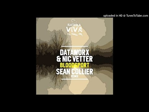 Dataworx, Nic Vetter - Bloodsport (Original Mix)