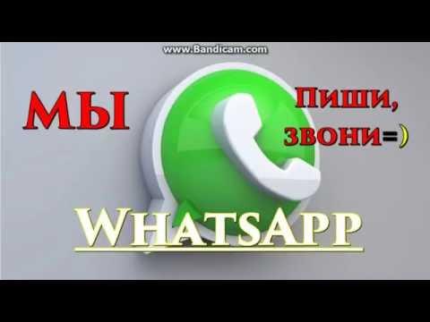 Мы в WhatsApp Russia Power Men Protein