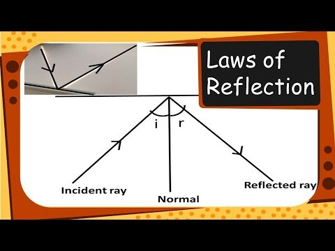 what is the law of reflection