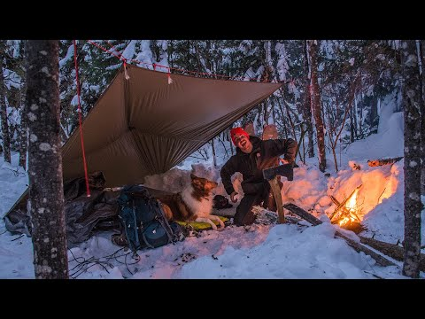 Winter Camping With My Dog - Delicious Campfire Cooking