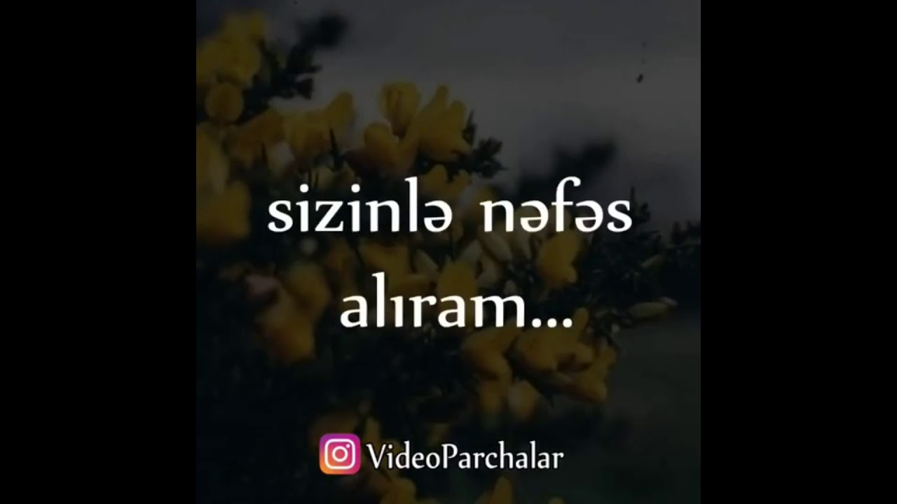 Iki Balam Ovlad Haqqinda Yazili Status 2019 Videoinstagram Sehifemizi Takib Edin Videoparcalar Youtube