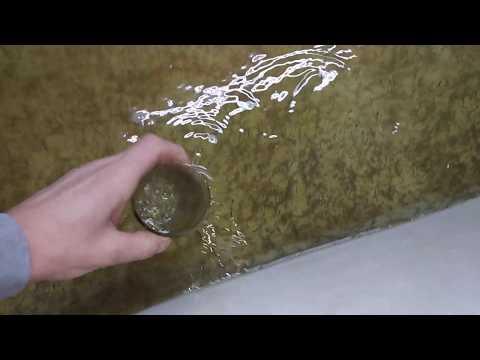Рабочий день рыбовода. Инкубация икры осетра, роение личинки осетра
