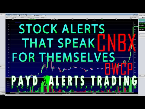 The Best Stock Alerts That Speak For Themselves