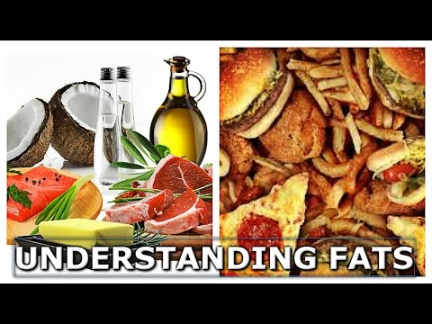 an understanding of fat Understand how insulin works in the body and how it impacts on belly fat and other life threatening conditions - free course.
