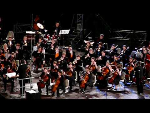Fluch Der Karibik Orchester