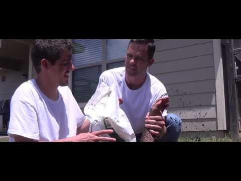 The Big Stink - Trailer