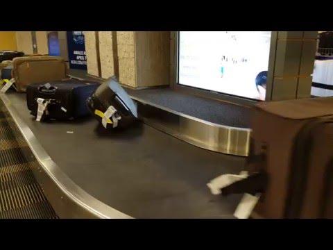 TPA Baggage claim | Airport Transportation : Pick up @ Tampa Airport .