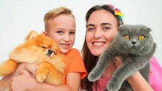 Vlad y Nikita con sus mascotas! ¡Colección de videos para toda la familia!