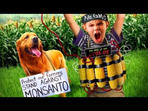 What if people told the truth about GMO on the Menu when going out to eat?