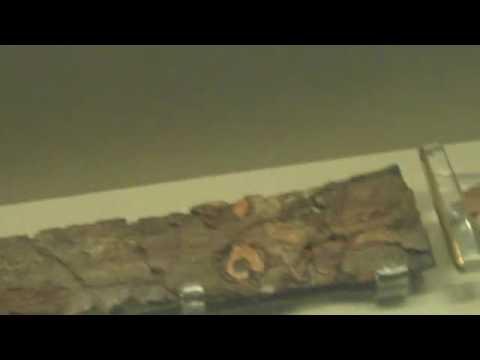British Museum - Sutton Hoo Ship Burial