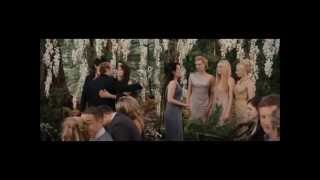 The Twilight Saga: Twilight, New Moon, Eclipse, Breaking Dawn part 1 and 2