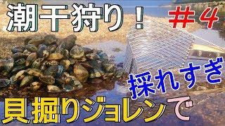 潮干狩りシーズン中盤!#4 貝掘りジョレンでアサリ採れすぎ! 今回の潮...
