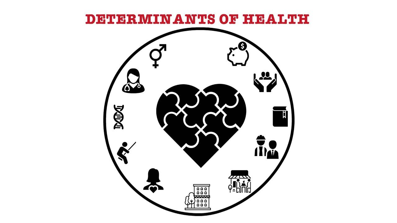 2019 Public Health Modernization - Responses