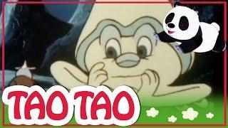 Tao Tao - 50 - Maksil und Maliket