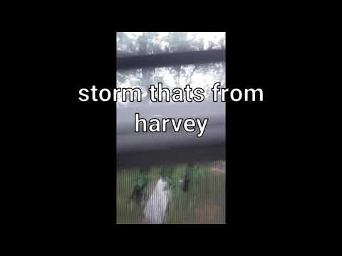 Storm from harvey, days with rain and mass flooding