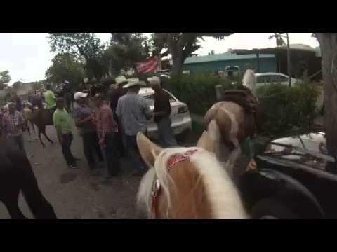 Cabalgata Salinas PR 2016