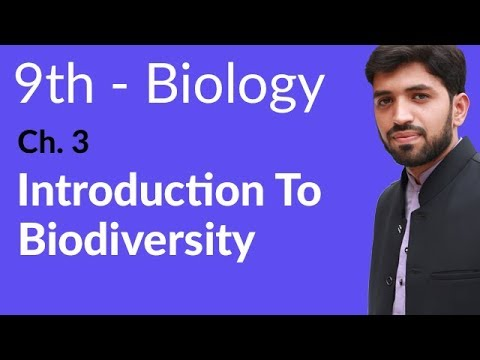 Introduction to Biodiversity Biology - Biology Chapter 3 Biodiversity  - 9th Class