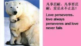 The Essence of LOVE 爱的真谛
