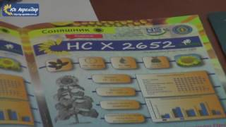 Описание гибрида подсолнечника НС Х 2652