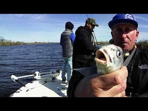 Sheepshead Smackdown! from YouTube · Duration:  8 minutes 45 seconds