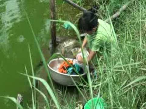 Vấn đề nước sạch ở Long An, Việt Nam