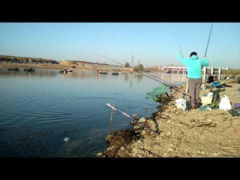 La pescuit pe Olt