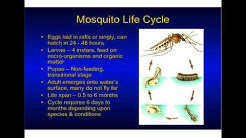 Mosquito Biology, Surveillance, and Control with Elmer Gray