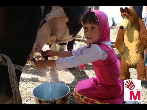 Как доят корову видео для детей руками