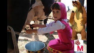 Влог vlog Маша и Миша доит корову как правильно доить корову руками