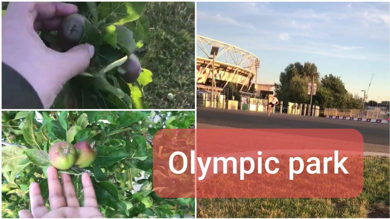 Download London olympic park  লন্ডন অলিম্পিক পার্ক  Sylheti uk blog