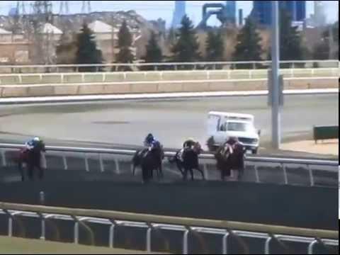 Woodbine Racetrack Live Video