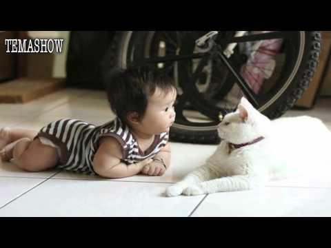 Прикольные фотки детей с кошками
