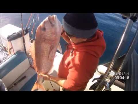 FISHING WITH SIMRAD NSS 12 EVO 2 -TM 185
