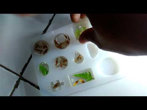 Epoxy resin with natural object (make jewelry)