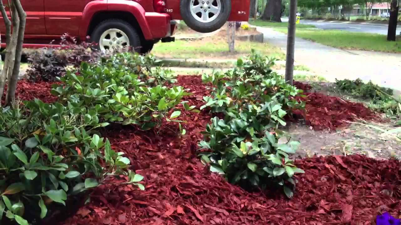 How to mulch a flower bed in 30 seconds youtube for Best flowers for flower bed