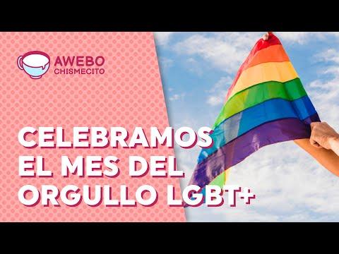 ¿Por qué en junio celebramos el mes del Orgullo LGBT+? | Awebo Chismecito