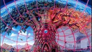 Kalpataru Tree - Strange Rotation (Remastered) [Visualization]