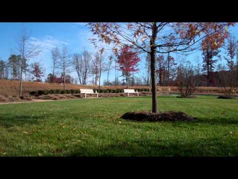 Hill Creek Park at Briar Chapel