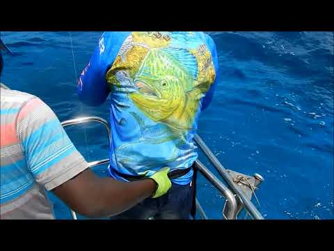 Game Fishing In Pemba , Mozambique.