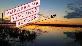 Рыбалка на карася ранним утром рыбалка на озере рыбалка на донку будни в деревне жизнь в деревне