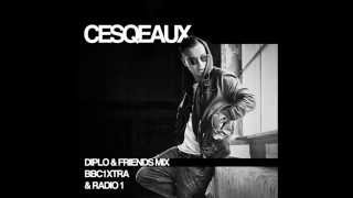 Cesqeaux - Diplo and Friends Mix - 5/04/2014