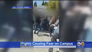 Caught On Camera: Fight Breaks Out At Paramount High School, 5 Months After Brawl
