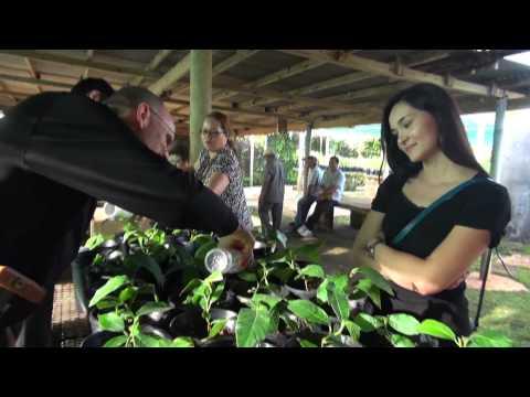 Micronesia Breadfruit Initiative launch by CNMI Gov. Eloy S. Inos