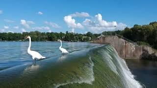 Geist Reservoir Dam (Hoosier Landmark Series)