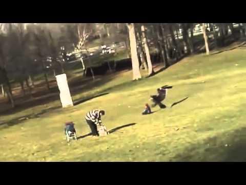 На ребенка напал орел