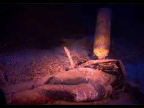 Dead diver, Blue Hole, Dahab. Depth 112 m (367 feet)