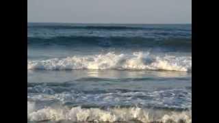 شاطئ العري