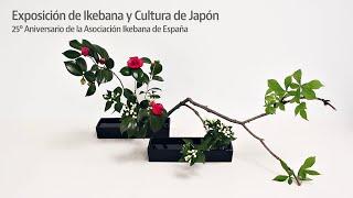 Ikebana, el arte floral japonés, en el Jardín Botánico de Madrid