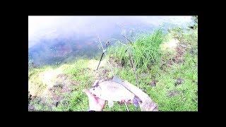 Карась на удочки.река Ахманка 6 07 18