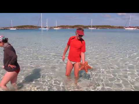 Seestern bei Alan Cay, Bahamas 2012